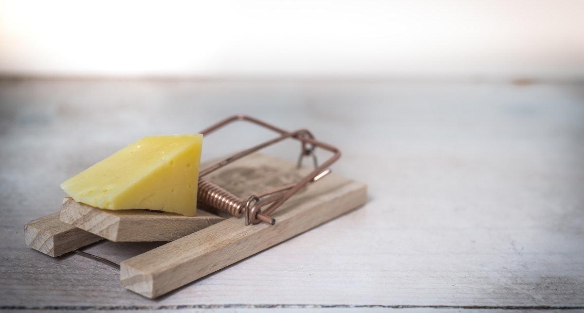 Musefælde med et stort stykke ost
